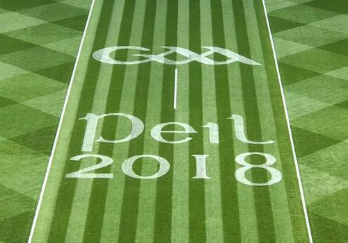 Grass Graphic GAA Final 2018