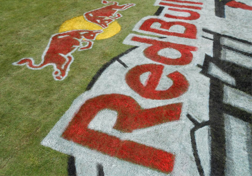 Grass Graphic Red Bull