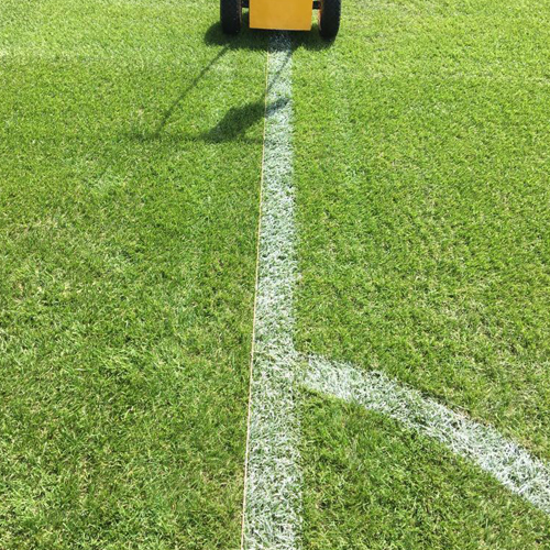 Professional Line Marking